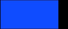 Virtual Leadership Experience Logo